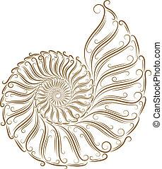 esboço, de, seashells