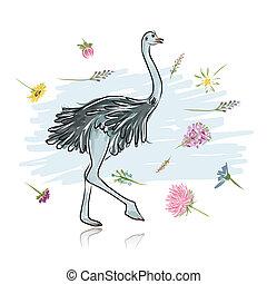 esboço, desenho, seu, avestruz