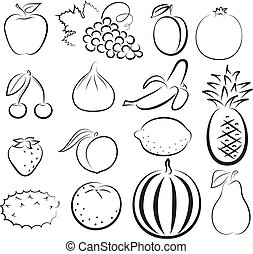 Esboço, diferente, frutas