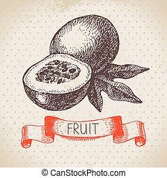 esboço, eco, fruit., mão, alimento, paixão, fundo, desenhado