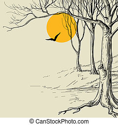 esboço, floresta, lua