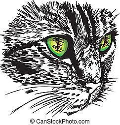 esboço, ground., pequeno, ilustração, gato, olhar, vetorial, algo, curioso