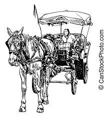 esboço, motorista, cavalo, pretas, branca, desenho