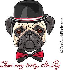 esboço, pug, raça, cão, vetorial, hipster