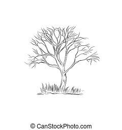 esboço, vetorial, árvore, estilo