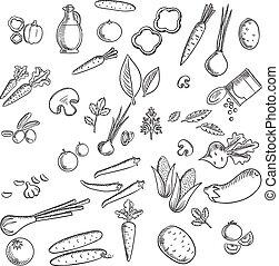 esboços, legumes frescos, ervas