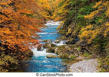 escénico, otoño, follaje de la caída