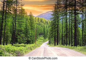 escénico, rural, conducir en, montana