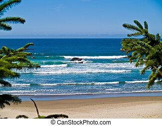escabroso, rocoso, dominar,  Oregón, Costa, playa