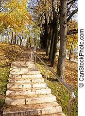 escada, parque