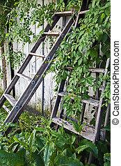 escada, trabalho, esperando, esquecido