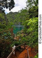 escadaria, baixo, através, arbustos, para, a, colina, guiando, direção, água verde