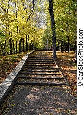 escadaria, em, outono, parque