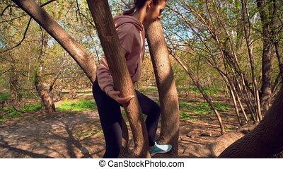escalade, femme, arbre, sur