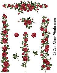 escalade, fleurs, brosses, ensemble, roses