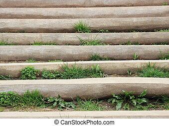 escalera, de madera, mala hierba, exterior, pasos, entre
