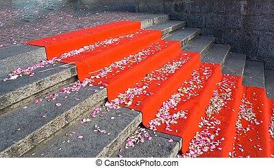 escalier, à, moquette rouge