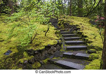 escalier, jardin pierre