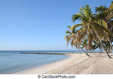 escamotee playa, llave florida, oeste