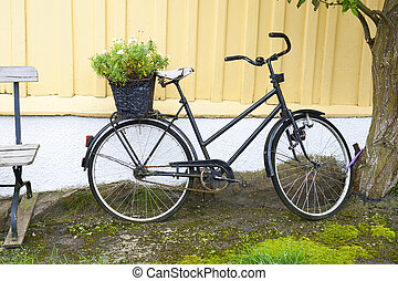 escandinavo, bicicleta