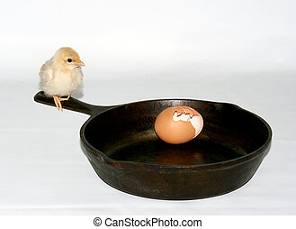 escape - baby chick sitting on the handle of a cast iron...