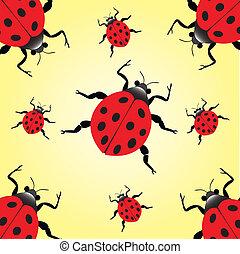 escarabajo dama
