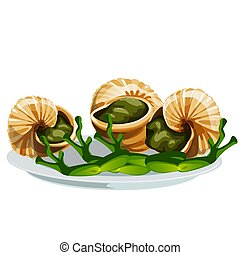 Escargot, a delicious French dish of snails isolated on...