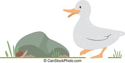 escargot, illustration, canard