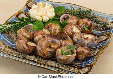 Escargot with rosemary, thyme, garlik and melissa