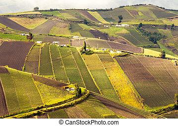escarpado, valle, agricultura