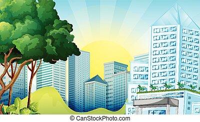 escena de la ciudad, con, alto, edificios