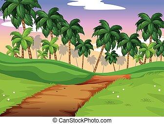escena de la naturaleza, con, rastro, encima, el, colinas