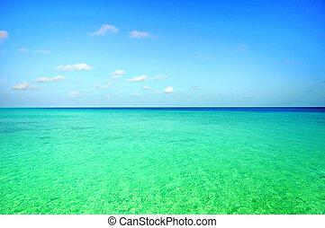 escena, océano