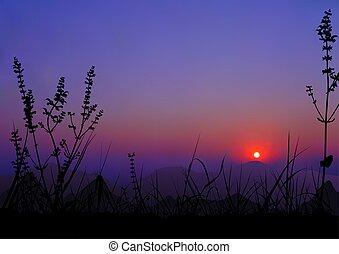escena, salida del sol