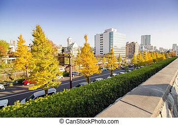 escena urbana, cerca, yoyogi, nacional, gimnasio