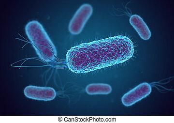 Escherichia Coli (E. Coli.) bacteria cells under microscope