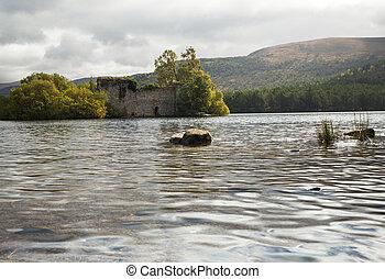 escocia, bosque, cairngorms, rothiemurchus, ruina