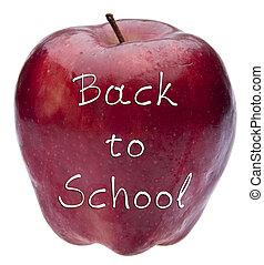 escola, conceito, costas