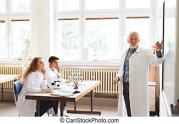 escola, estudantes, alto, ensinando, sênior, laboratory., professor