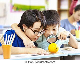 escola, grau, brincalhão, estudantes, asiático, curioso