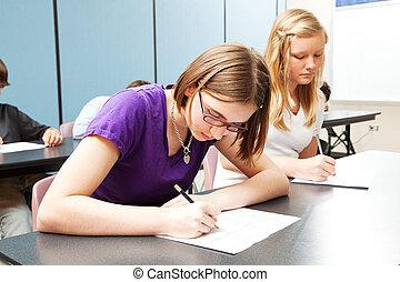 escola secundária, acadêmico, testar