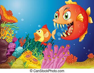 escollos, peces, coral, dos, colorido
