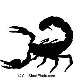 escorpião, silhuetas, vetorial