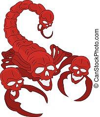 escorpión, plano de fondo, caricatura, blanco, (ornate), cráneo, cabeza roja