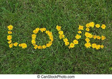 escrito, capim, amor, flores