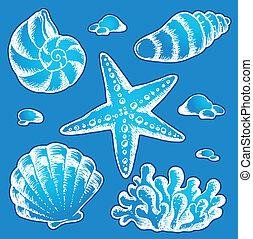 escudos mar, desenhos, 2