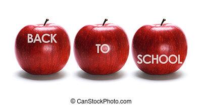 escuela, concepto, espalda
