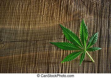 escuro, madeira, folha, marijuana