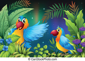 escuro, pássaros, dois, floresta