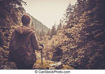 escursionista, montagna, camminare, andando gita, poli, foresta